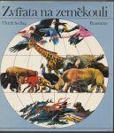 Zvířata na zeměkouli - Sedlag
