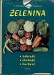 Zelenina v zahradě v obchodě v kuchyni - Klimentová