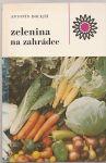 Zelenina na zahrádce - Dolejší