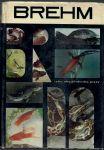 Brehm - Život zvierat 2 / Ryby, obojživelníky, plazy