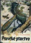 Pravěké ptactvo - Augusta