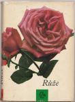 Růže - Večeřa